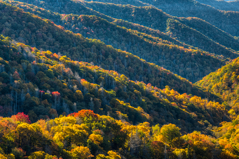 Great Smoky Mountains National Park Photo