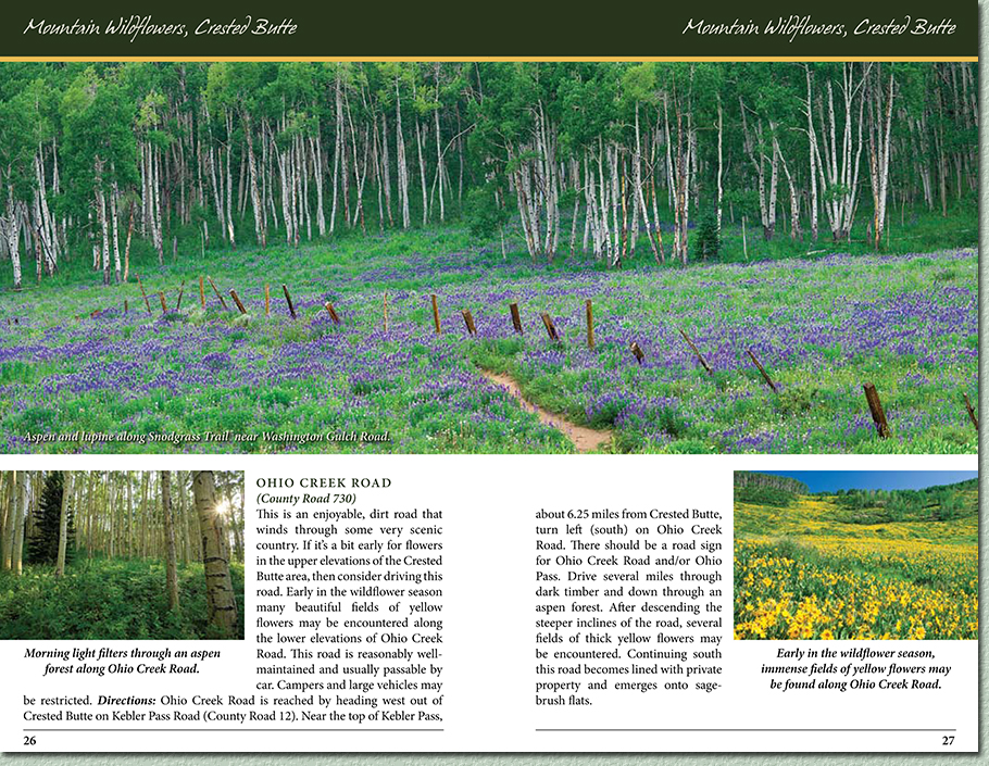 Colorado Wildflower Photography Locations