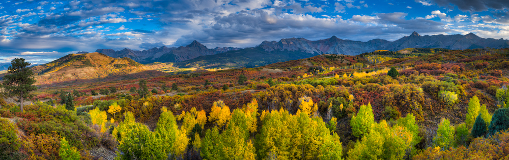 Panoramic photograph of autumn in Colorado.