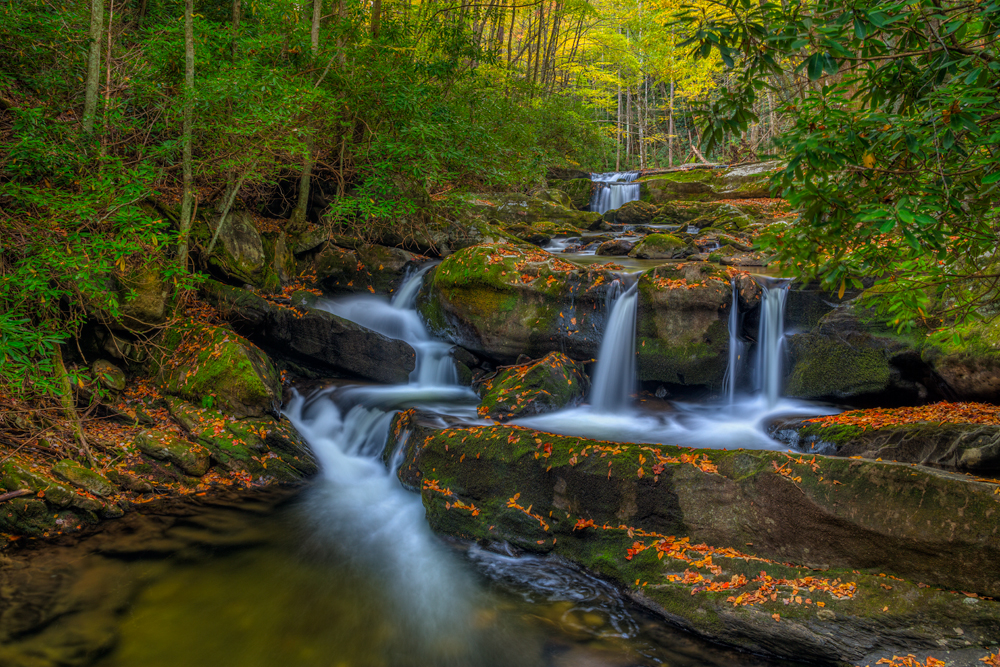 Great Smoky Mountains National Park Photography
