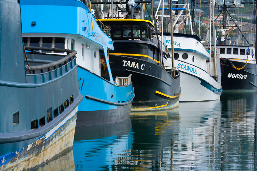 Newport Marina, Oregon Coast Photograph