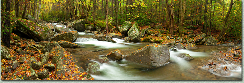 Photo of Smoky Mountain National Park