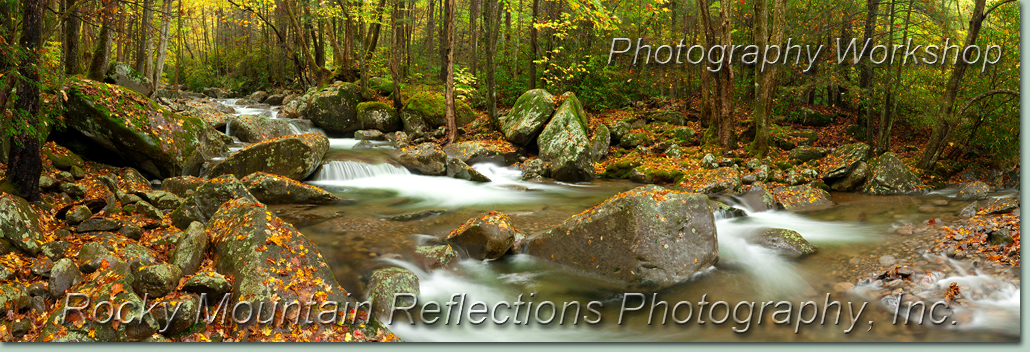 Smoky Mountain National Park Photo Workshop