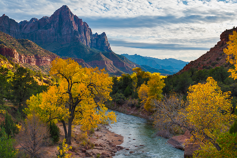 Picture of The Watchman in Zion National Park.