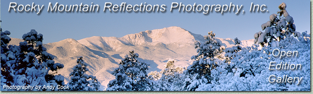 Winter Photography, Photographs