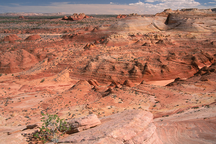 Photo of Coyote Buttes area of Paria Canyon-Vermilion Cliffs Wilderness, Utah.