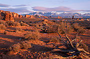 Photograph of Arches National Park, Utah.