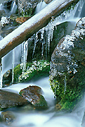 Colorado Photograph - Winter Stream